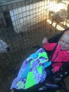 She really enjoyed the goats