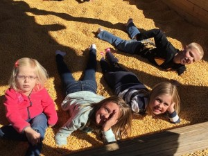 Crazy kids playing in the corn at Vala's.