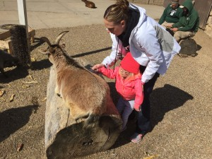 Spring Break spent wisely brushing goats at the Zoo.